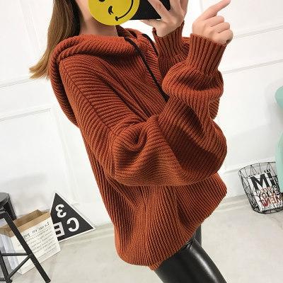 秋冬 ニット フード付き ゆったり 学生 個性 シンプル レディーズ女性 カジュアル ファッション 合わせやすい