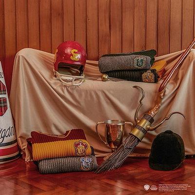 スパオ【SPAO X HARRY POTTER】 19S/S ハリーポッターコラボレーションQuidditch Sweater SPKW923C90