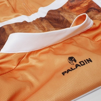 2015 PALADIN Breathable Cycling Jersey/Road Bicycle Clothes Roupa Ciclismo/Riding Bike Clothing GEL Pad Bib Pants/Shorts Suit