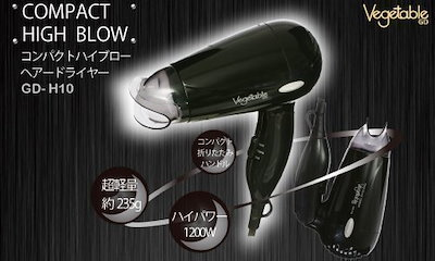 Vegetable コンパクト ヘアドライヤー ブラック GD-H10