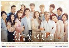 韓国ドラマ 『黄金色の私の人生 DVD』 全話収録