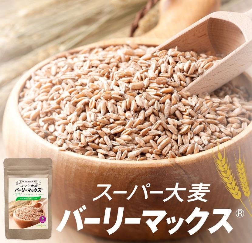 バーリー スーパー マックス 大麦