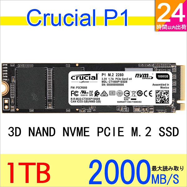 P1 CT1000P1SSD8