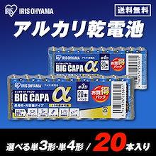 まとめ買いでお得【メール便送料無料】選べるアルカリ乾電池 BIG CAPA α シュリンク包装 20本パック (単3形・単4形)