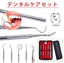 【theleader】GZ399 デンタルケア 5点セット 通常の歯磨きでは取りきれない 歯石を自宅で簡単にケア