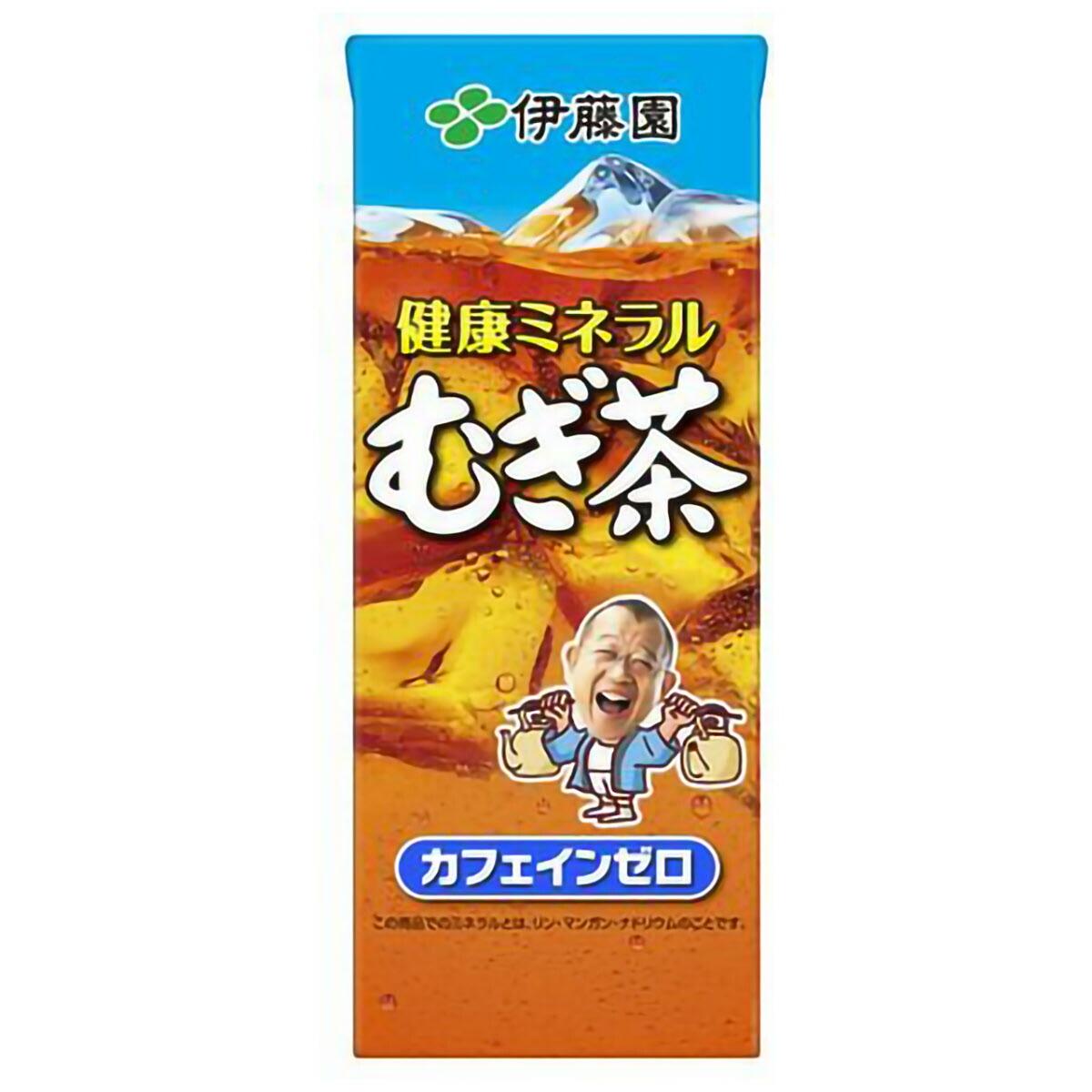 伊藤園 健康ミネラルむぎ茶 紙パック 250ml(1本) 044445 [分類:スポーツドリンク]