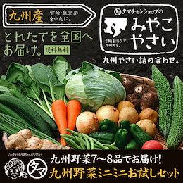 【送料無料】九州 野菜 7~8品 ベストセレクション 九州野菜ミニミニお試しセット 九州で摂れた美味しい野菜をタマチャンショップが選りすぐりでお届け!【ご当地野菜/九州】【お試しセット】
