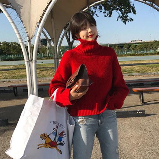 リプハプLIPHOPオンザきたタートルネックニットニート ニット/セーター/ニット/韓国ファッション
