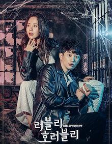 韓国ドラマ 【ラブリーホラーブリー】 全話収録 Blu-ray DISC1枚組