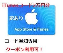 [20000円分] iTunes Card 各種決済可能 日本版 アイチューンズカード Apple プリペイドカード コード通知専用 iTunes カード(出荷の前売をする)