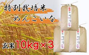 【特別栽培米 炭壌米 めんこいな】令和3年産 玄米 10kg3袋(合計:30kg)