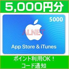 [5000円分] iTunes Card 各種決済可能 日本版 アイチューンズカード Apple プリペイドカード コード通知専用 iTunes カード