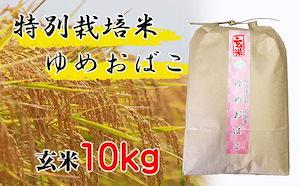 【特別栽培米 炭壌米 ゆめおばこ】令和3年産 玄米 10kg