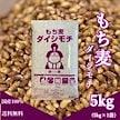 国産 もち麦 ダイシモチ 5kg 紫もち麦