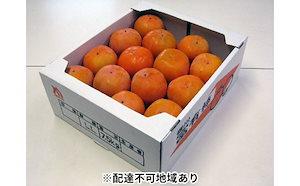 富有柿 約7.5kg