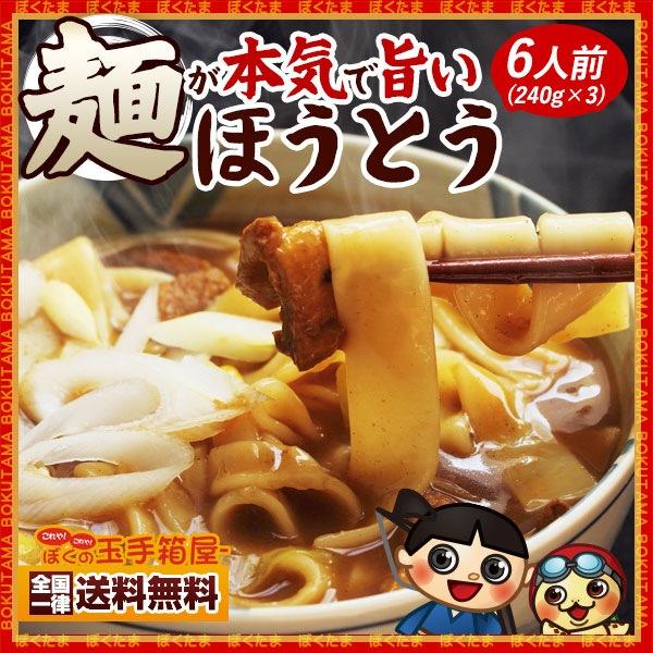 麺が本気で旨い平打ちの生麺 ほうとう お試し6人前セット720g(240g×3) 【送料無料】 ( 特産品 名物商品 )