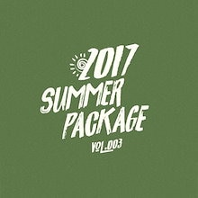 【K-POP DVD】★ BTS SUMMER PACKAGE in INDONESIA 2017 ★【日本語字幕あり】★【防弾少年団】