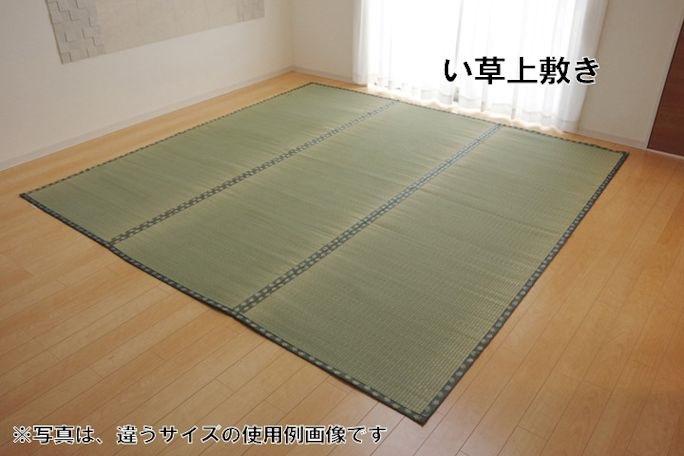 国産い草上敷きカーペット「松」江戸間6畳 ござ ラグ 畳(983)