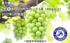 黒川農園 氷温(登録商標) シャインマスカット 1房(900g以上)2022年1月発送分