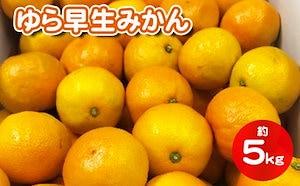 香川県産ゆら早生みかん 約5kg(傷み補充500g分含む)