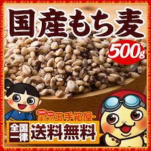 もち麦 国産もち麦 国内産もち麦 500g 送料無料