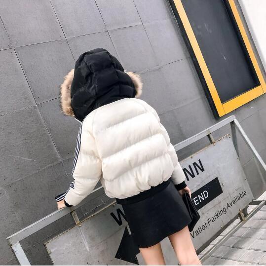 コート スリム バイカラー 防寒保暖 ストライプ柄 モコモコネック 毛襟 原宿系 全4色