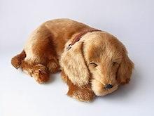 [ぬいぐるみ] 本物そっくりに眠る犬のぬいぐるみ|パーフェクトペット|ダックス(スムース)