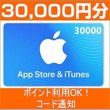 [30000円分] iTunes Card 各種決済可能 日本版 アイチューンズカード Apple プリペイドカード コード通知専用 iTunes カード(出荷の前売をする)
