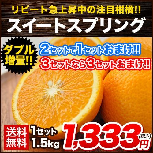 スイートスプリング 1.5kg 熊本県産 送料無料 旬 の みかん 熊本産 (3L〜Lサイズ/3L-L混合) 2セット購入で1セット分、3セット購入なら3セット分増量 《7-14営業日以内に出荷予定