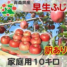 ★セール★ りんご 訳あり 青森県産 早生ふじ 家庭用 キズあり 10kg