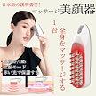 日本語の説明書 多機能経絡マッサージブラシ LEDレッドライト 振動マッサージブラシ 美顔器