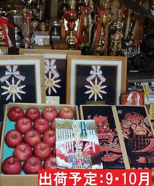 910月 親子三代最高位の早生ふじ約5kg 【全国りんごコンクール最高賞受賞青森りんご平川市広船産9