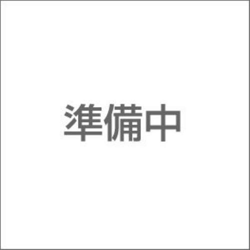HGBD 1/144 ガンダムダブルオースカイ