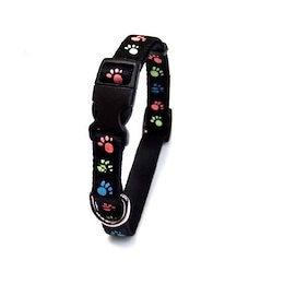 蓄光フットカラー #15 小型犬用首輪 [黒] [E380023H] [ONS]